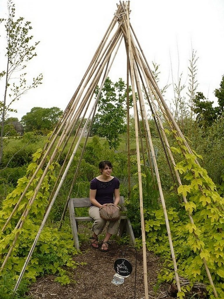Living Outdoor Willow Structures You Can Grow In Your Backyard