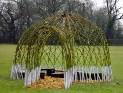 Living Willow Structures