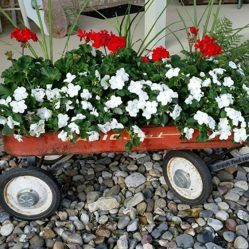 Planters on Wheels