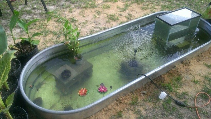Awesome aquarium and fish pond ideas for your backyard for Koi pond kiddie pool