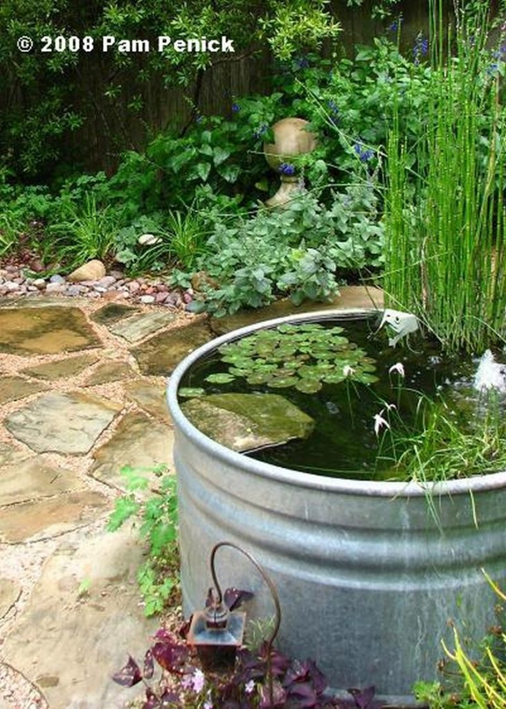 Awesome aquarium and fish pond ideas for your backyard for Garden pond water features
