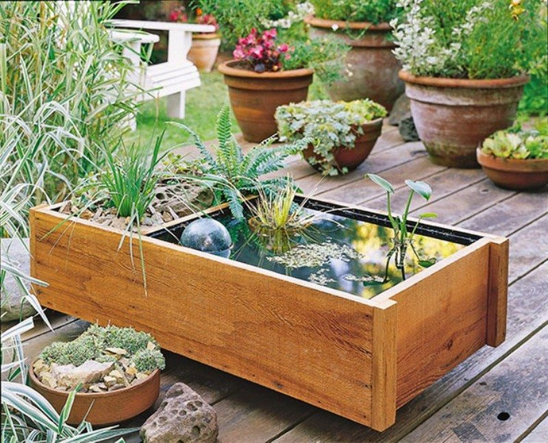 Awesome aquarium and fish pond ideas for your backyard for How to build an outdoor aquarium