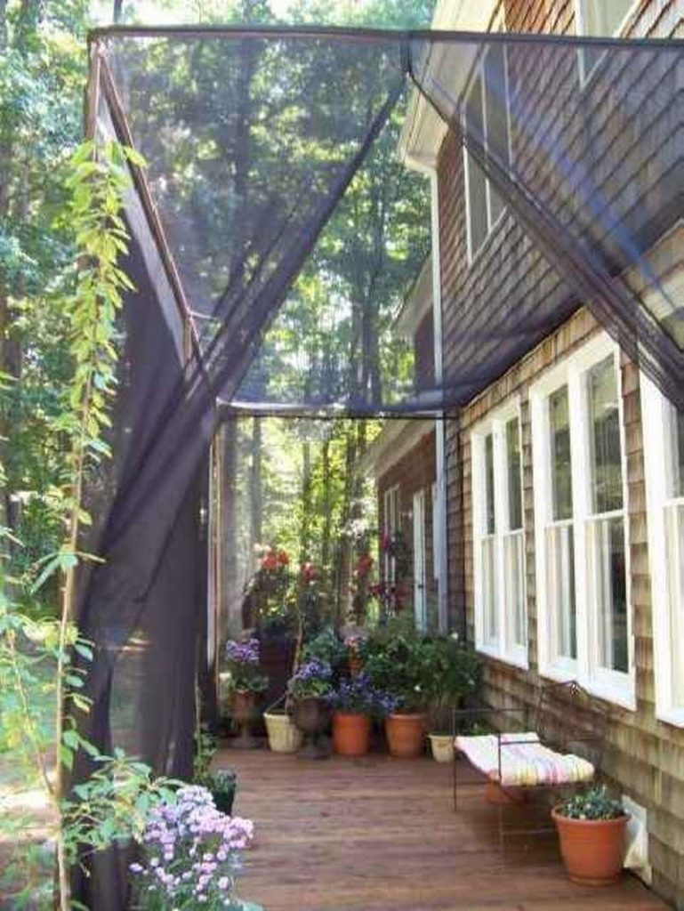 Privacy Screen Ideas for Your Outdoor Area - The Owner ...