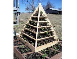 Space Saving DIY Vertical Gardens
