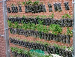Space Saving DIY Vertical Gardens
