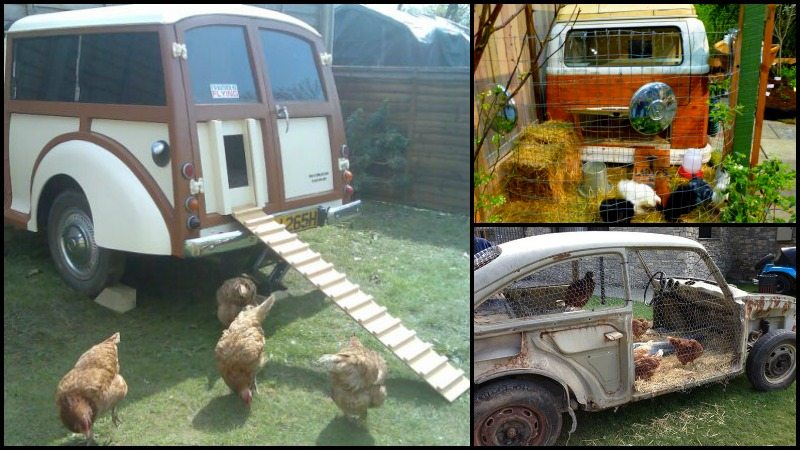 Old Vehicle Chicken Coops Main Image