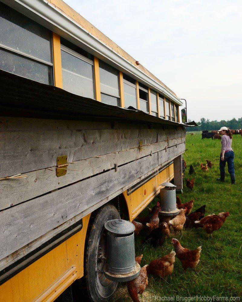 Vehicle Chicken Coops