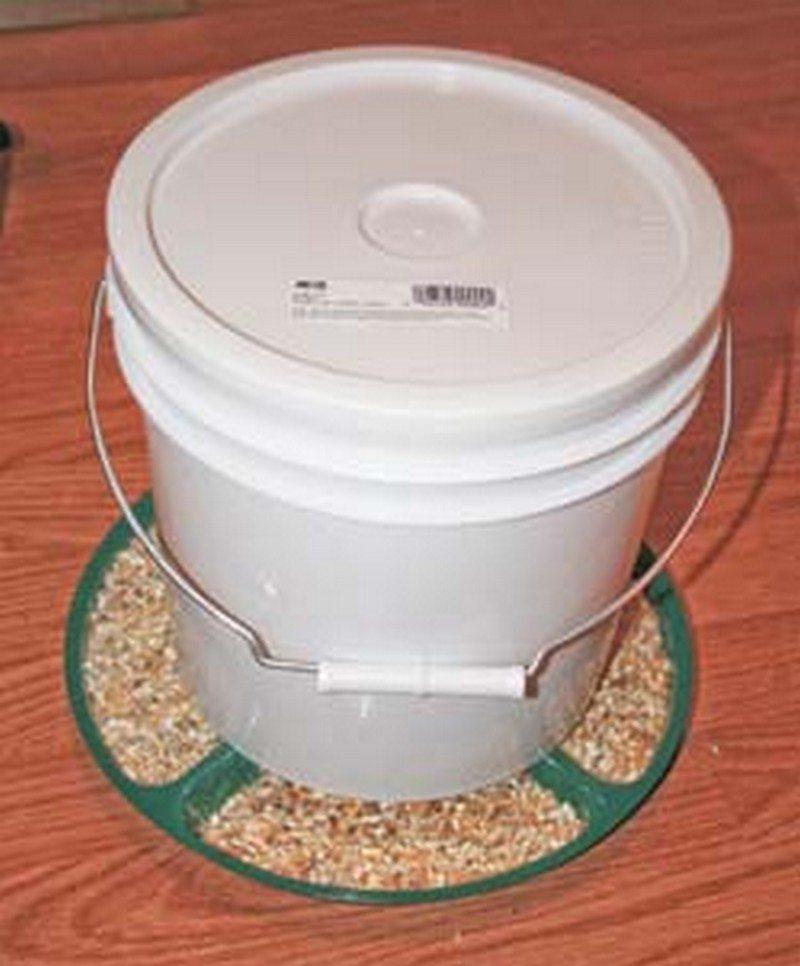 Easy chicken feeder solutions the owner builder network for Old chicken feeder ideas
