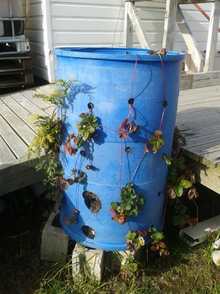 Gallon Plastic Barrel Projects