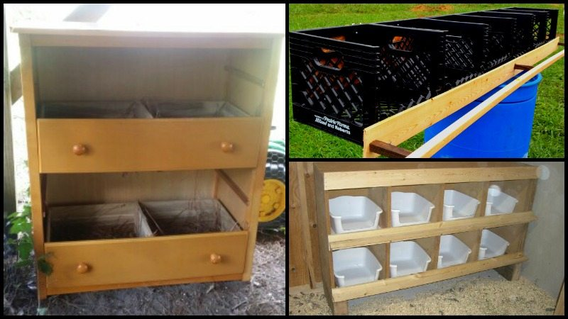 Nesting Box Ideas Main Image