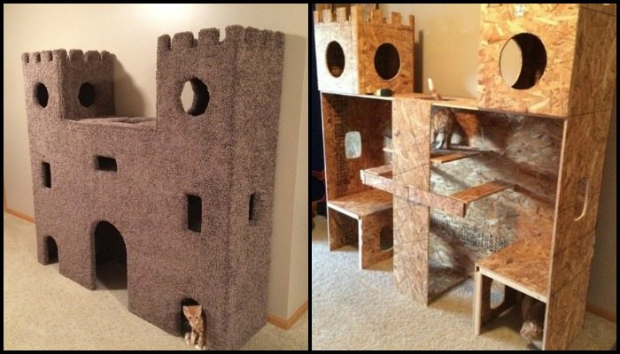 Build a cat castle to keep your pets busy!