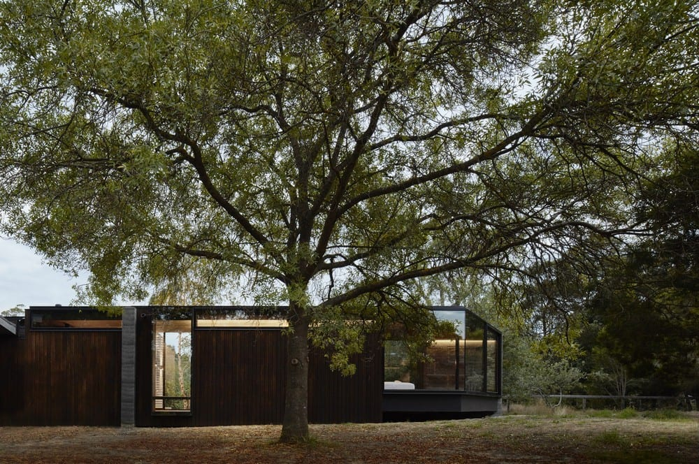 Pavilion Between Trees