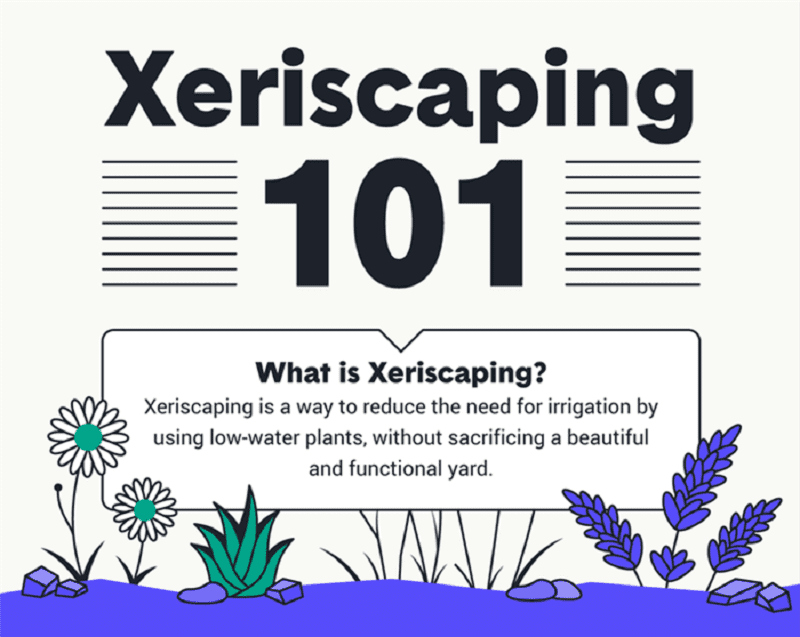 Xeriscaping is a type of landscaping that uses native, drought-tolerant plants or plants adapted to dry environments.