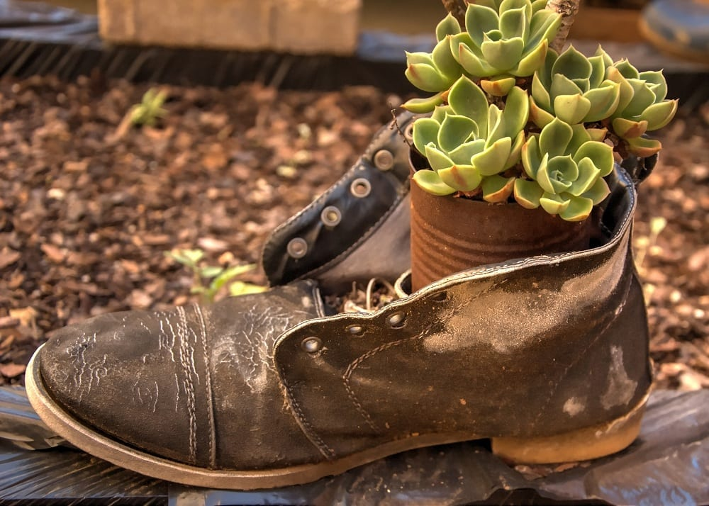 You can use old leather boots or even stilettos in your garden.