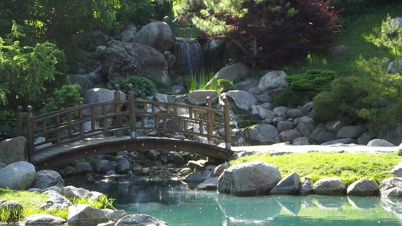 Healing gardens provide a tranquil place to escape from the antiseptic world of doctors, hospitals, and sickness.