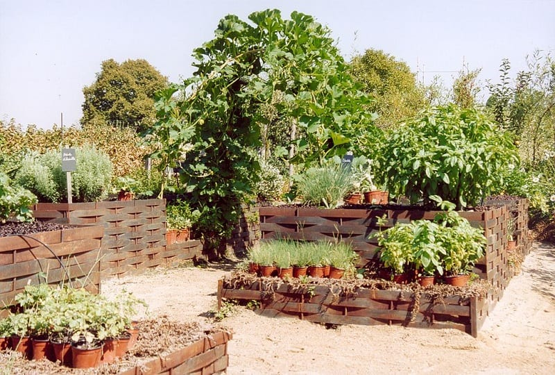There are many diverse potager designs.
