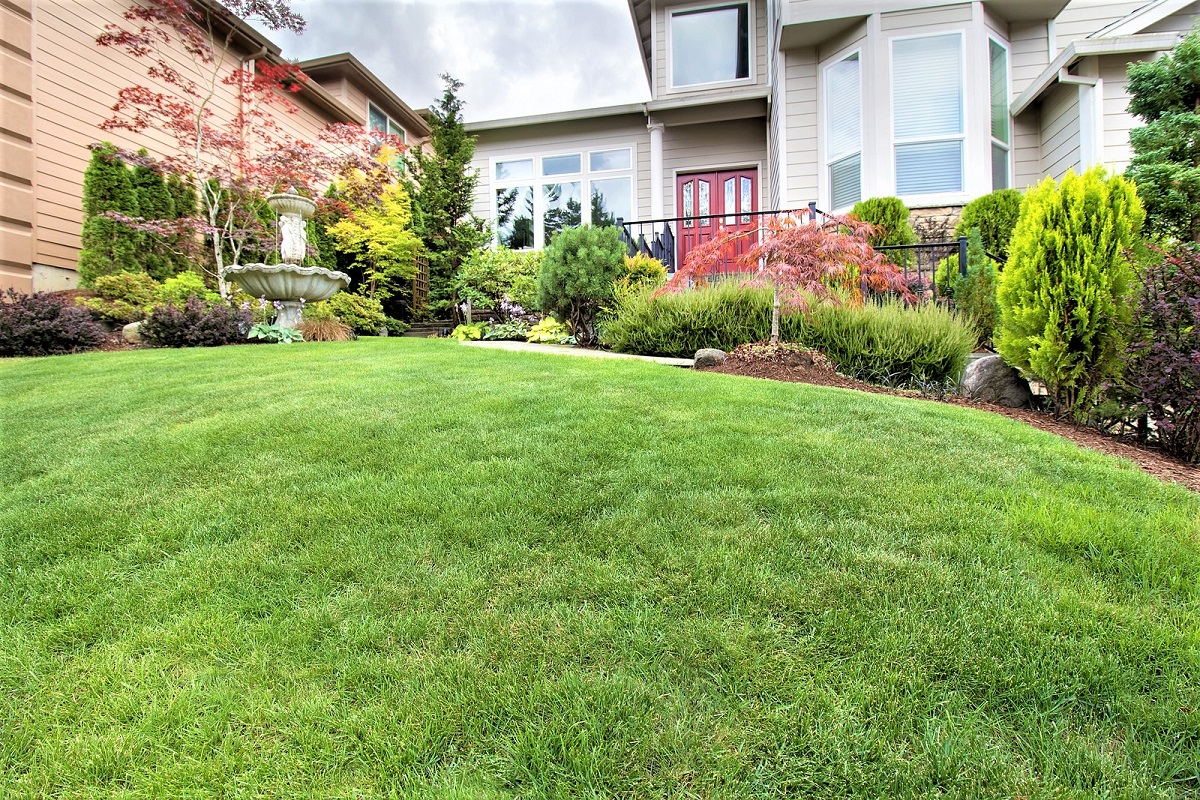 How to Fix a Stubborn Lawn Drainage Problem
