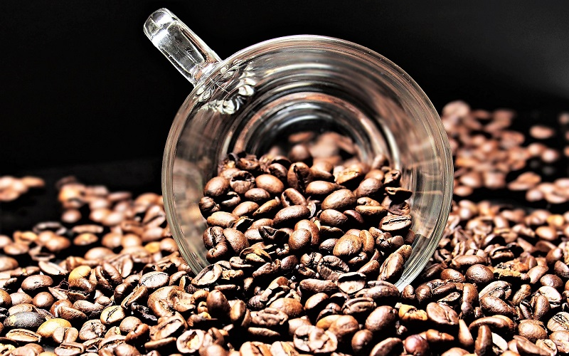 Coffee connoisseurs will tell you that it's less about the manner of preparation and all about the beans.