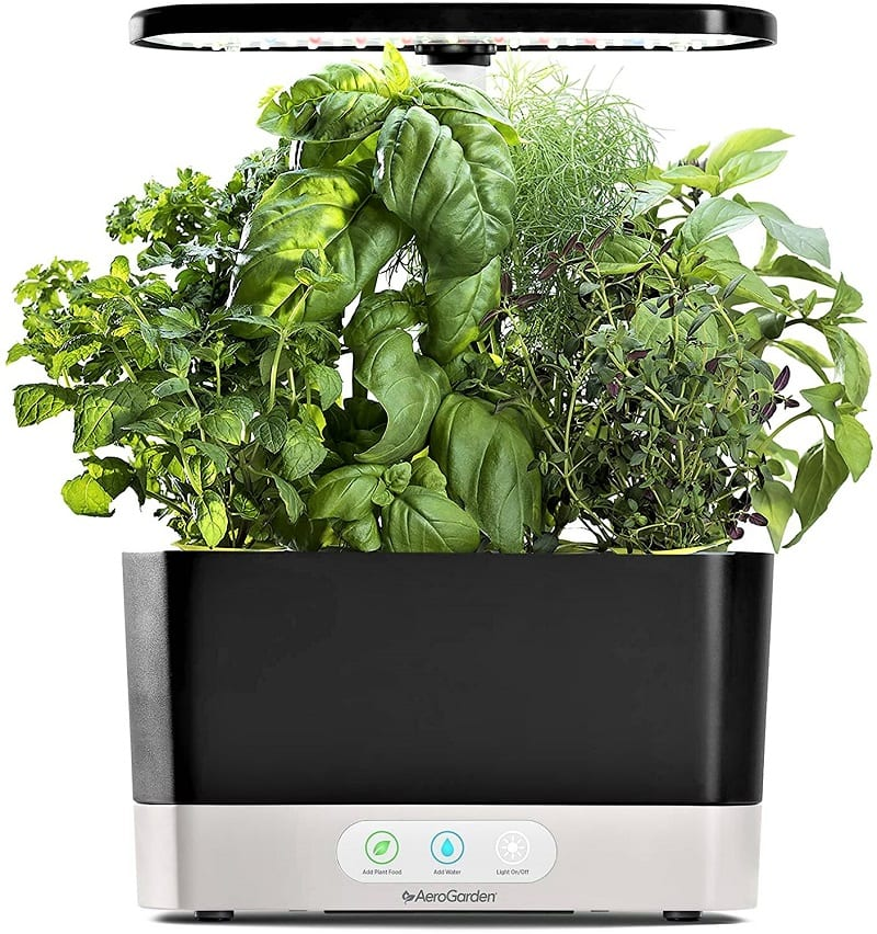 Aerogarden's Black Harvest grows 6 plants and is excellent for kitchen herbs.